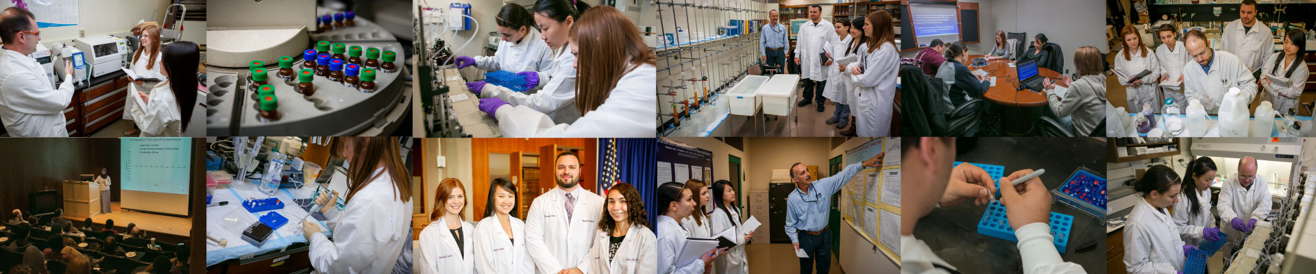 Master of Science in Laboratory Sciences