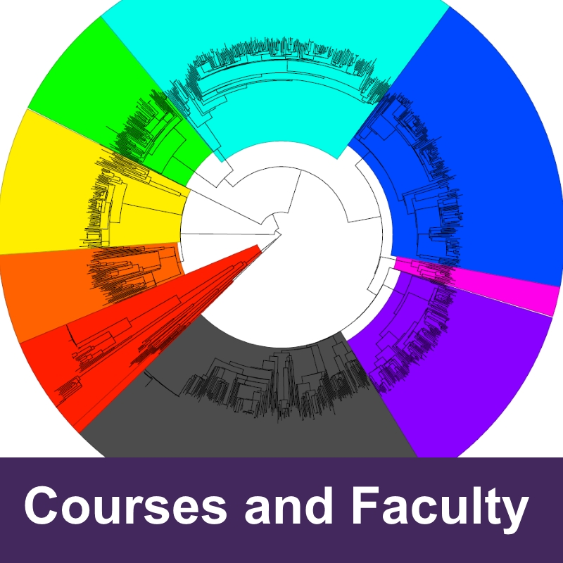 Courses and Faculty