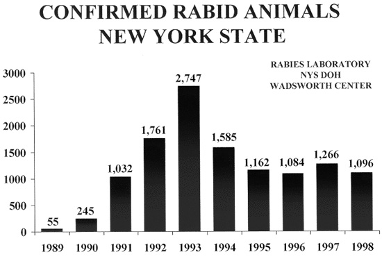 table: Confirmed Rabin Animals in New York State