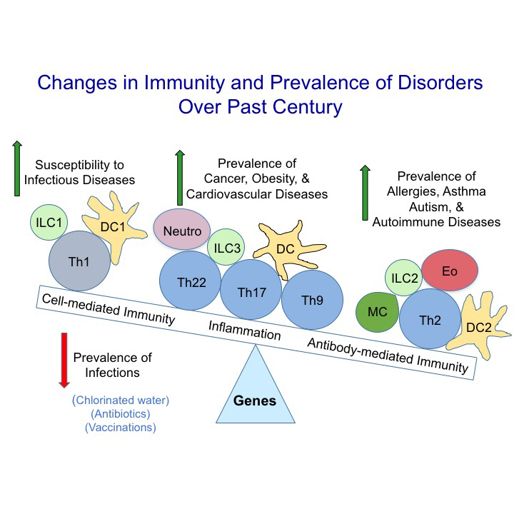 Changes in immunity and prevalence of disorders over past century