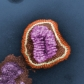 Influenza virus. Photo Credit: Frederick Murphy; Content Provider CDC/Erskine Palmer, Ph.D.; M.L. Martin